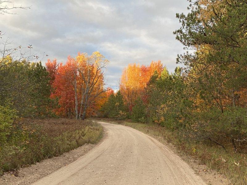 South Reynolds Road - Fall 2020