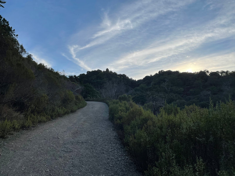 The gravel trail works its way up the hillside in the early evening.