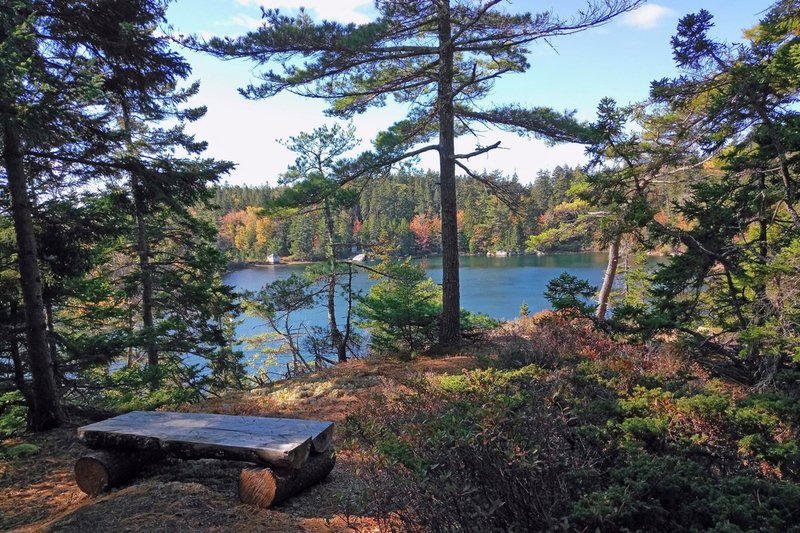 Outlook over Round Pond.