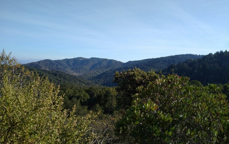 The Santa Cruz Mountains to the south, from high on Tie Camp Trail, on a clear New Year's Eve Day.
