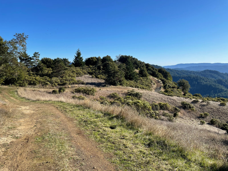 The trails as it starts to descend the hillside with the Santa Cruz mountains in the distance.