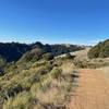Looking along the ridge line toward Russian Ridge from the Butano View Trail.