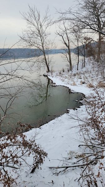 View of the Jacomo Lakeshore from Larry's Trail.
