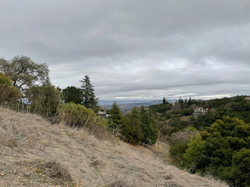 A view from the top of the Fire Road Trail. You can see parts of Silicon Valley and the surrounding hillsides from here.