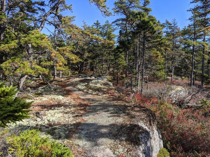 Granite formation at trail loop
