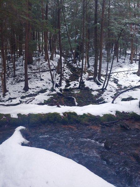 Following the stream on Rimrock Loop.