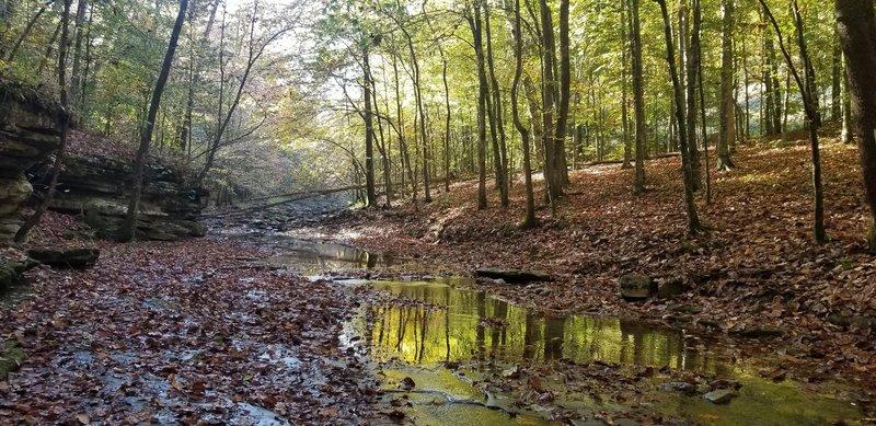 October 2020 On the Buffalo River Trail Crossing Steele Creek.