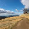 Rowell Ridge Trail
