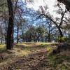 Olmstead Loop Trail