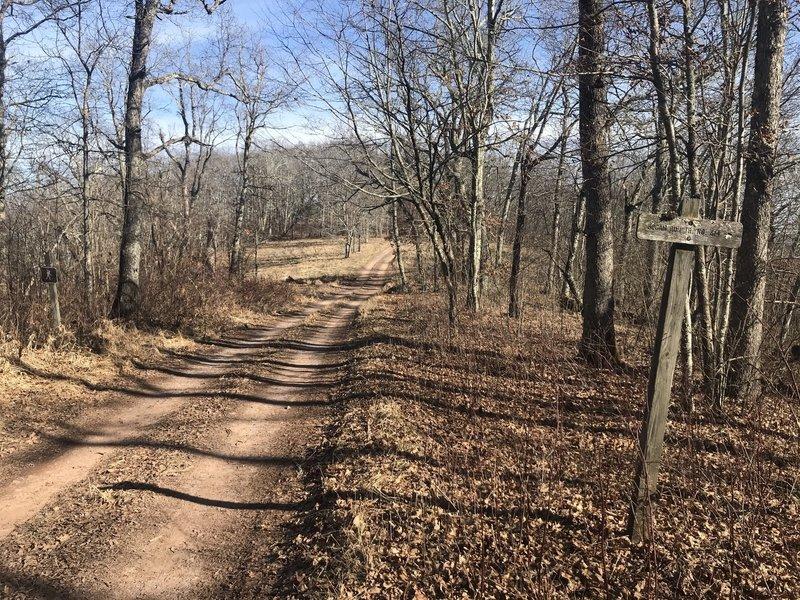 Trail crosses FR 121 at ridge top of Back Creek Mtn.