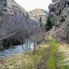 Asotin Creek Trail
