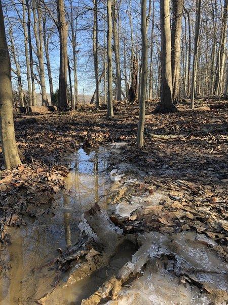Muddy frozen trail