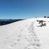 The last few yards to the top of El Capitan