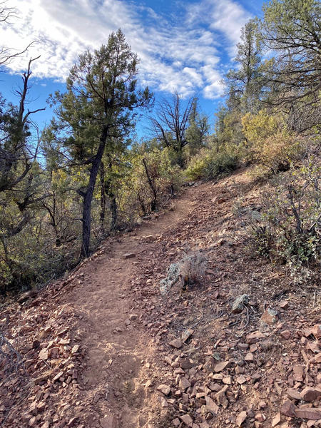 This is the best surface you can hope for and there's not much of it. Be ready to work on this hike/run.