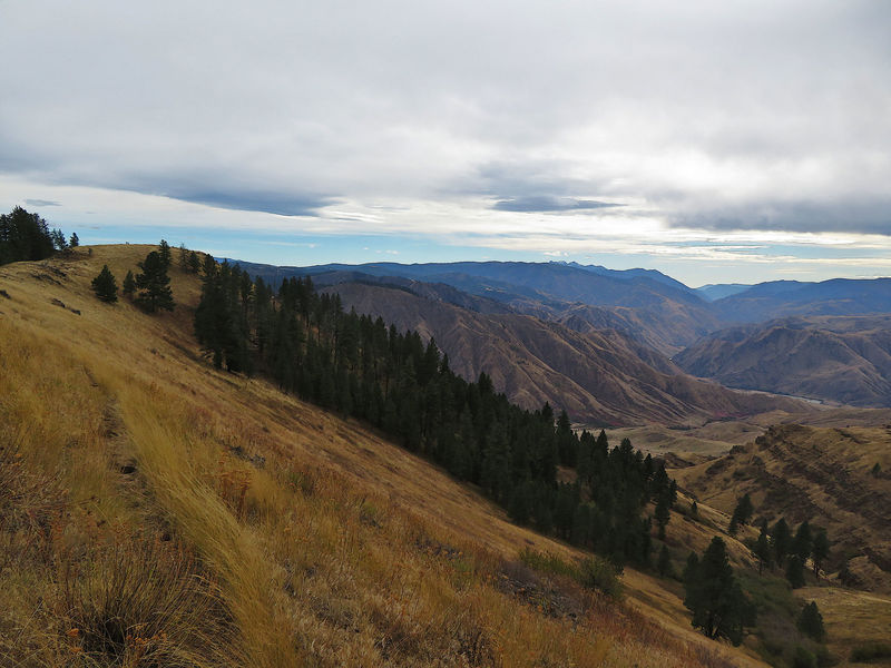 The view into Hells Canyon near Wildhorse Saddle.