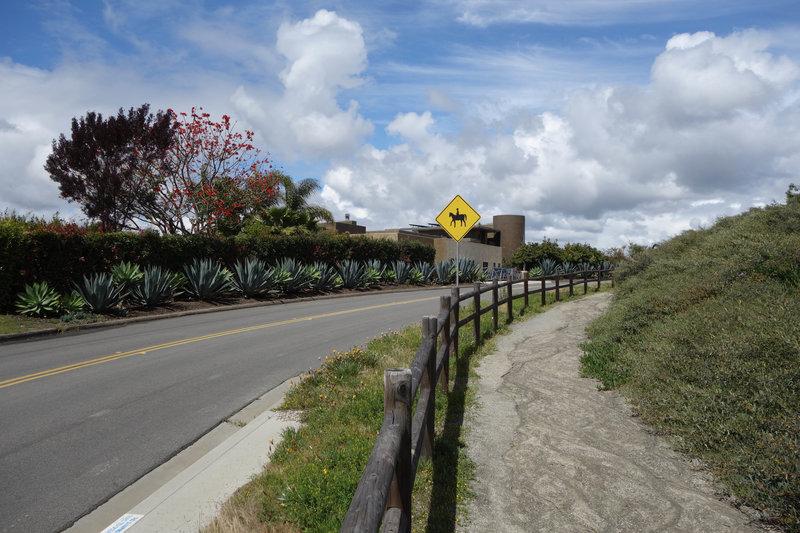 Del Mar Mesa Equestrian trail near the top of Del Mar Mesa Rd.