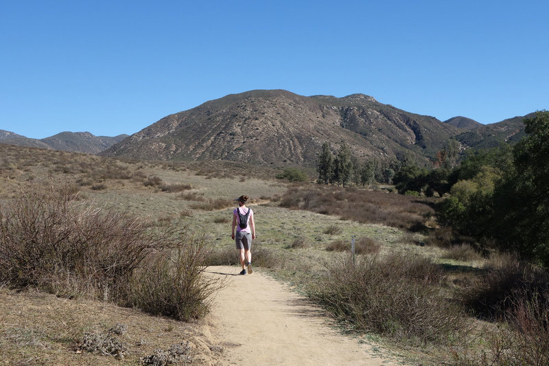 Hiker on the Pamo Valley Trail