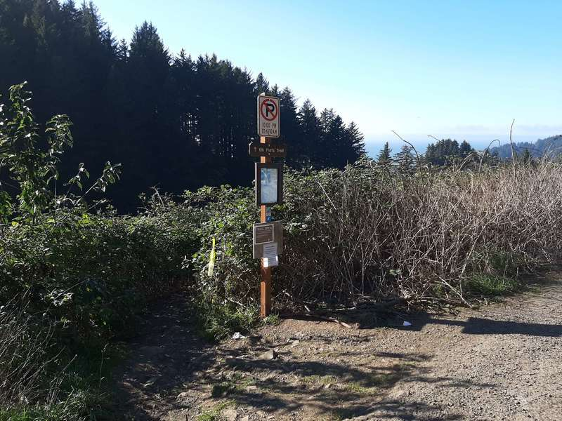 A trailhead sign marks a trail that goes down into a meadow.