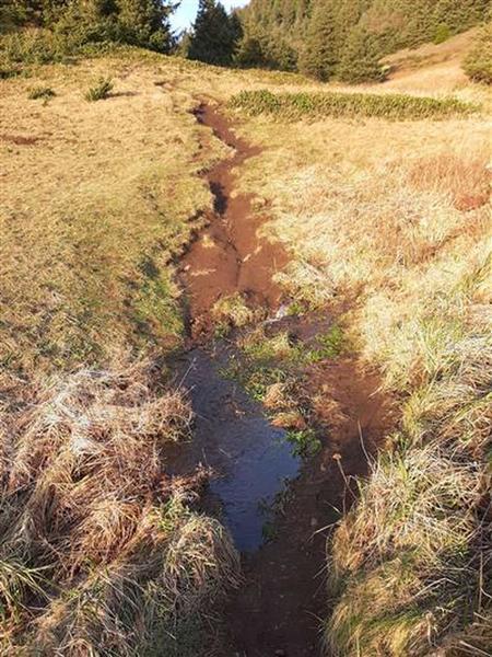 A muddy steep trail through a grassy meadow crosses a stream.