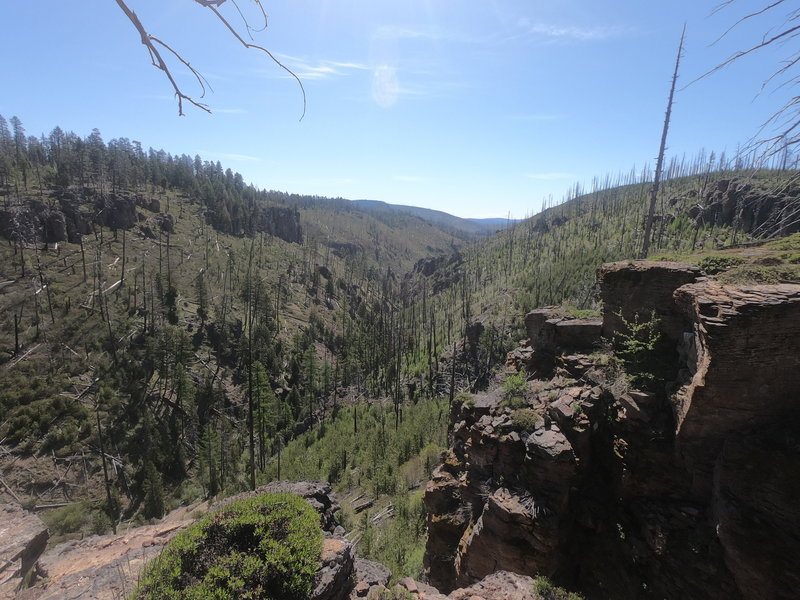 Desolation Canyon from north section of Twin Pillars Trail.
