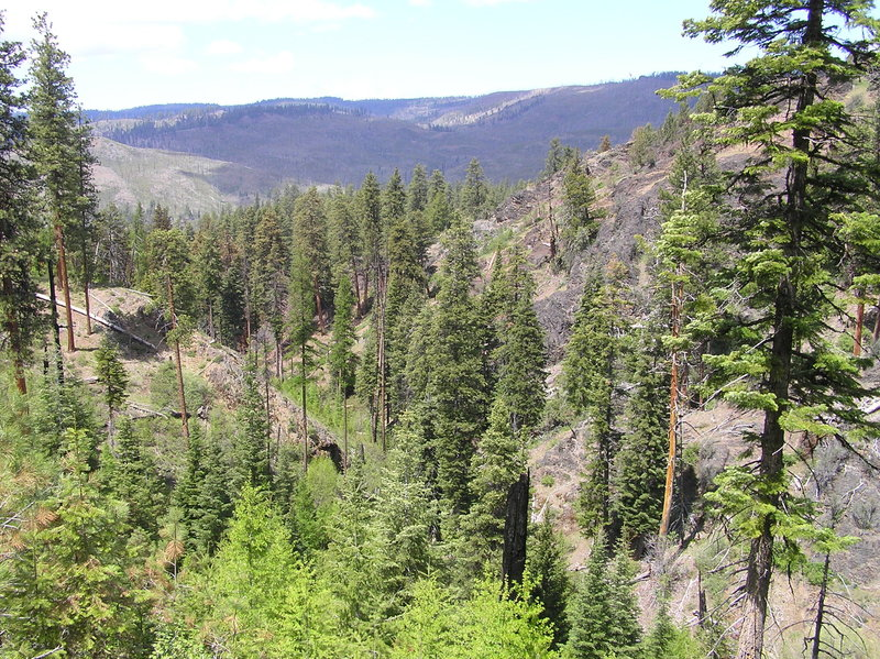 Mill Creek Wilderness from upper section of Belknap trail.