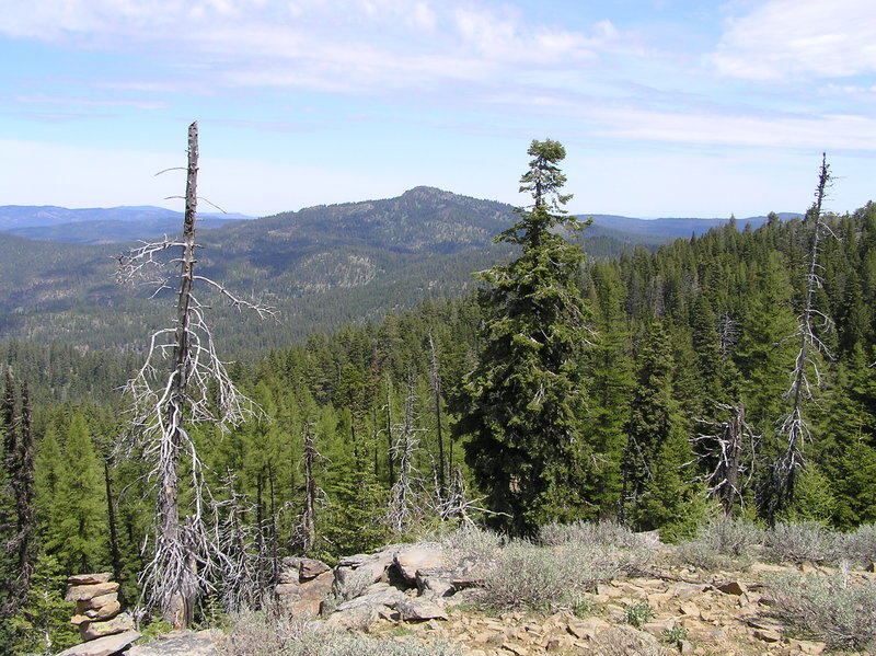 Round Mountain from Independent Mine Trail.