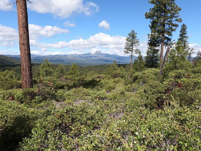 Mt. Washington from Green Ridge Trail