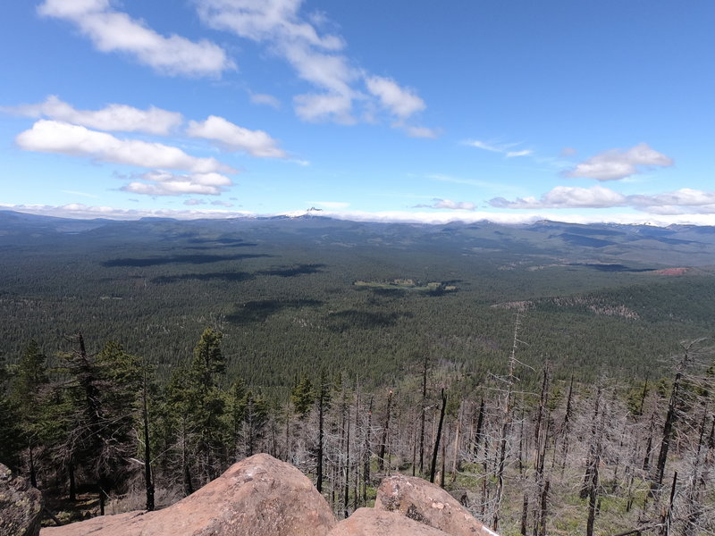 View of Metolius basin from outcropping near Green Ridge Trail.