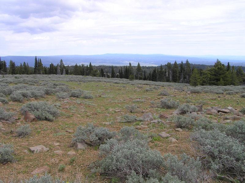 View east toward Big Summit Prairie