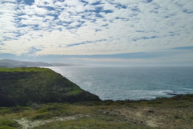 The ocean shimmering in the afternoon sun, looking south at the south end of the Seal Rock Overlook Spur.