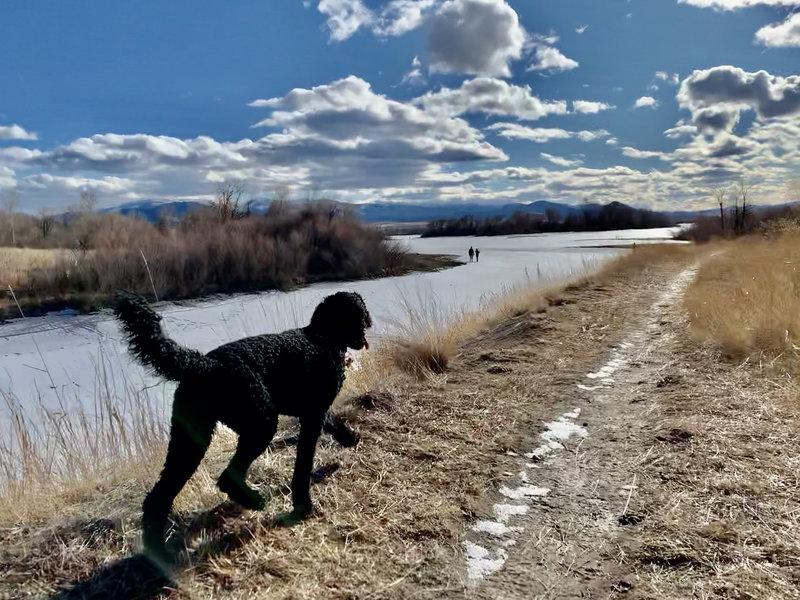 Winter trail access