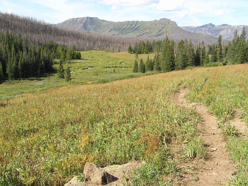 Skinny Fish Lake trail looking back towards Trapper Peak.