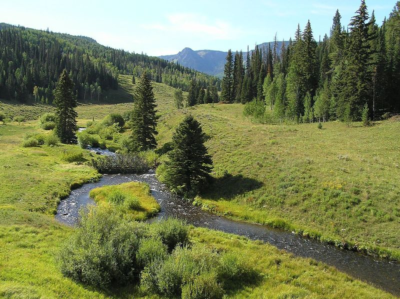 East fork Marvine Creek
