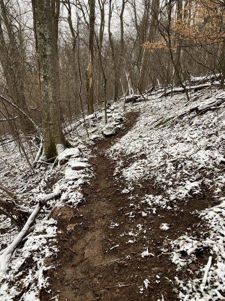 Singletrack portion of Gray Trail start.
