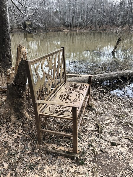 Beautiful - and surrealist - bench in the Sandy Creek Nature Loop