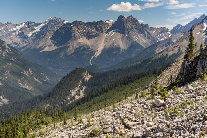 The view south from the Iceline Trail, just before turning downhill to descend back into the valley and Takkakkaw Falls.