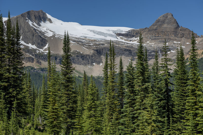 Glacier capped peaks across the valley from the Iceline Trail.
