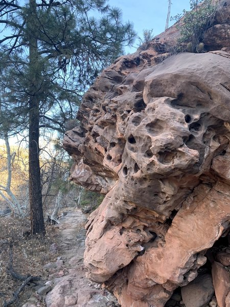 Rock formation on Huckaby Trail