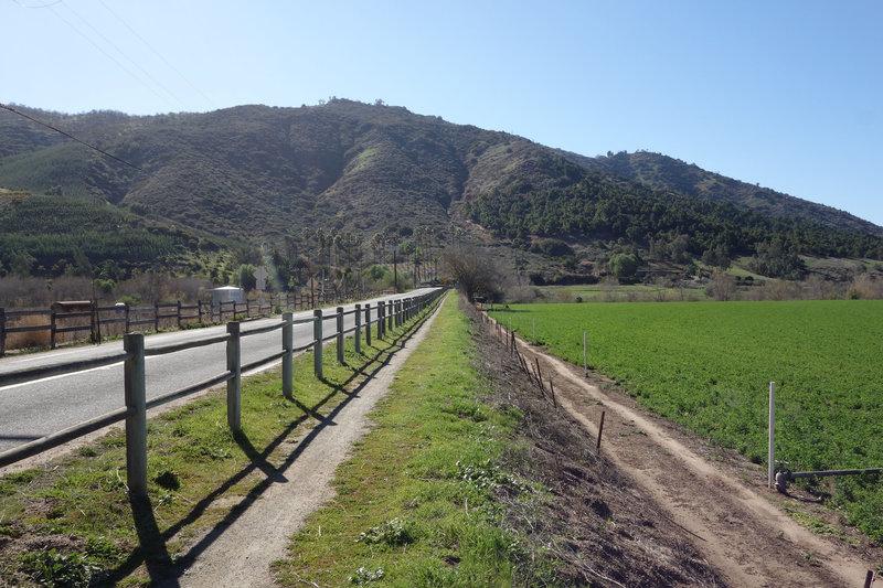 Raptor Ridge trail paralleling Bandy Canyon Road.