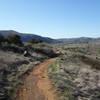 Raptor Ridge trail near where it breaks away from Bandy Canyon Road.