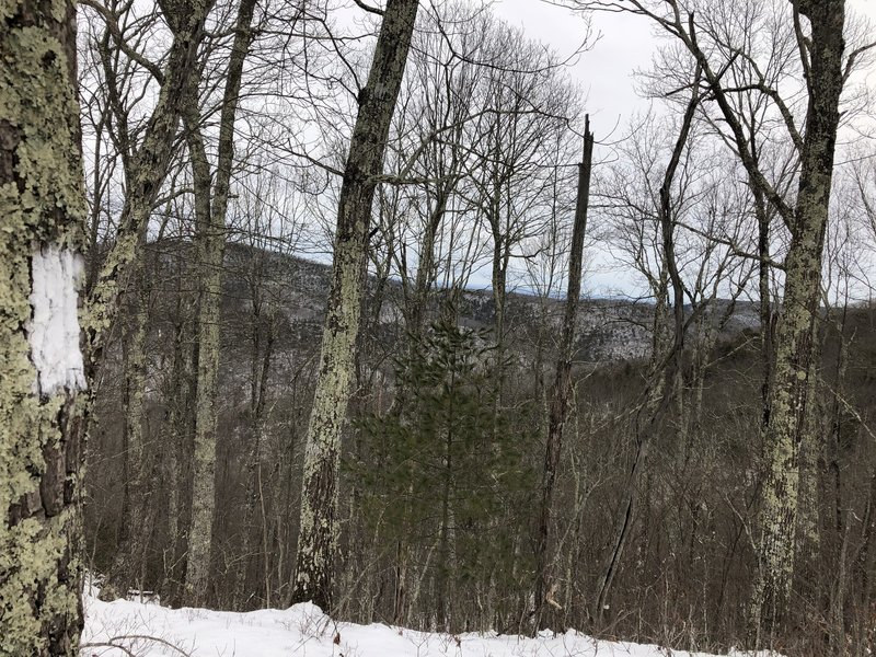 Following the white blazes on the Boundary Trail.