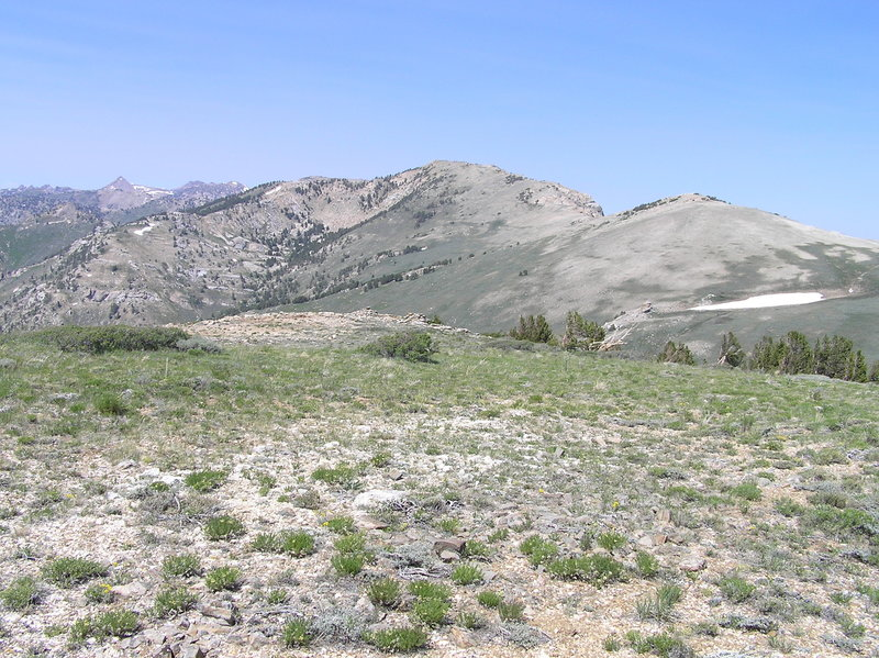 Looking north on Ruby Crest trail just west of Indian Graveyard Basin.