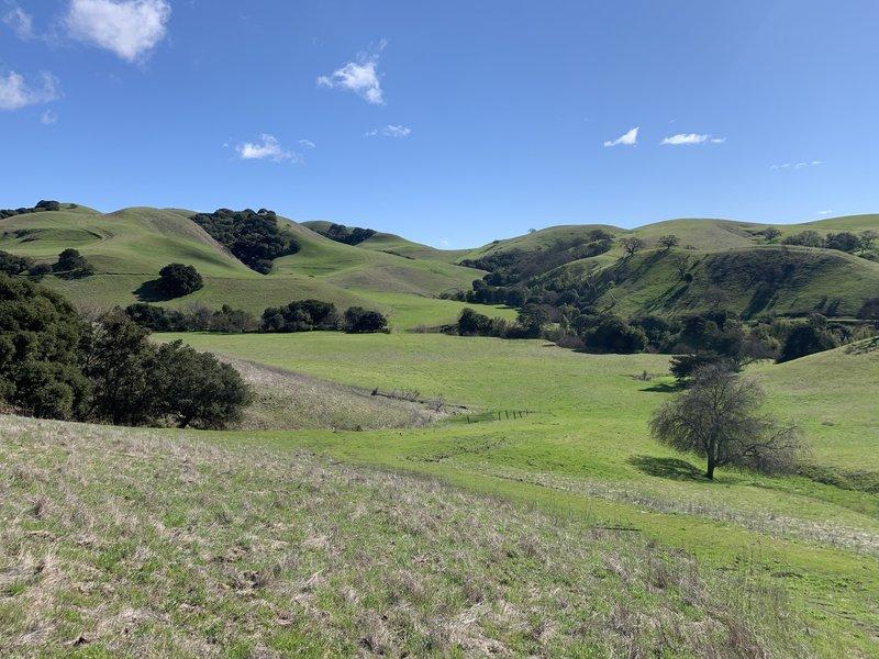 View from the Kestrtel Loop Trail.