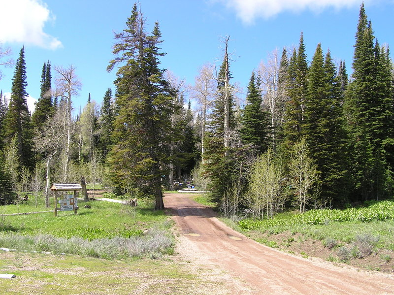 Slide Creek Campground adjacent to trailhead.