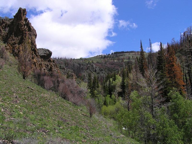 Looking back up Slide Creek Canyon