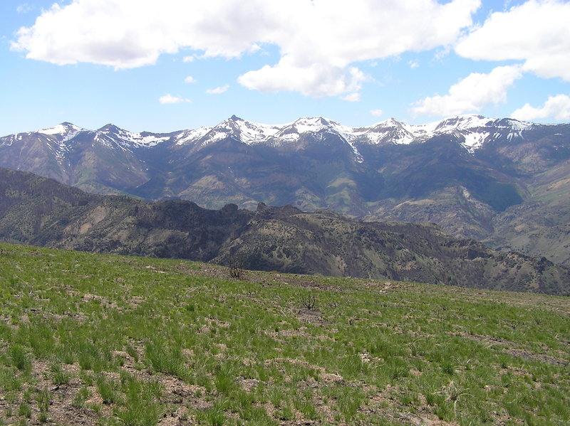 View of main peaks of Jarbidge Wilderness from near Slide Creek Campground. Peaks include (L to R) Prospect, Cougar, Matterhorn, Square Top, Jumbo and Jarbidge.