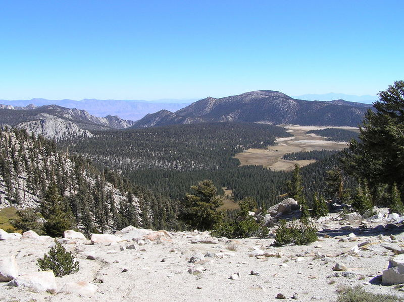 Horseshoe Meadow from Cottonwood Pass.