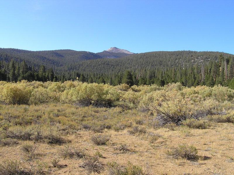 Kern Peak from Ramshaw Meadow.