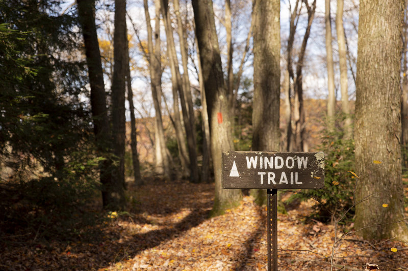 Window Trail - Kennerdell Tract