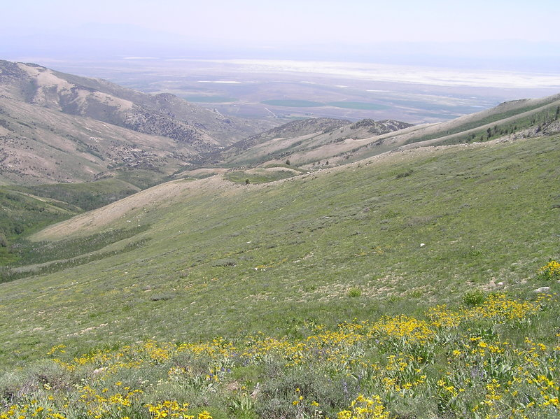 Ruby Valley from Overland Lake Trail.